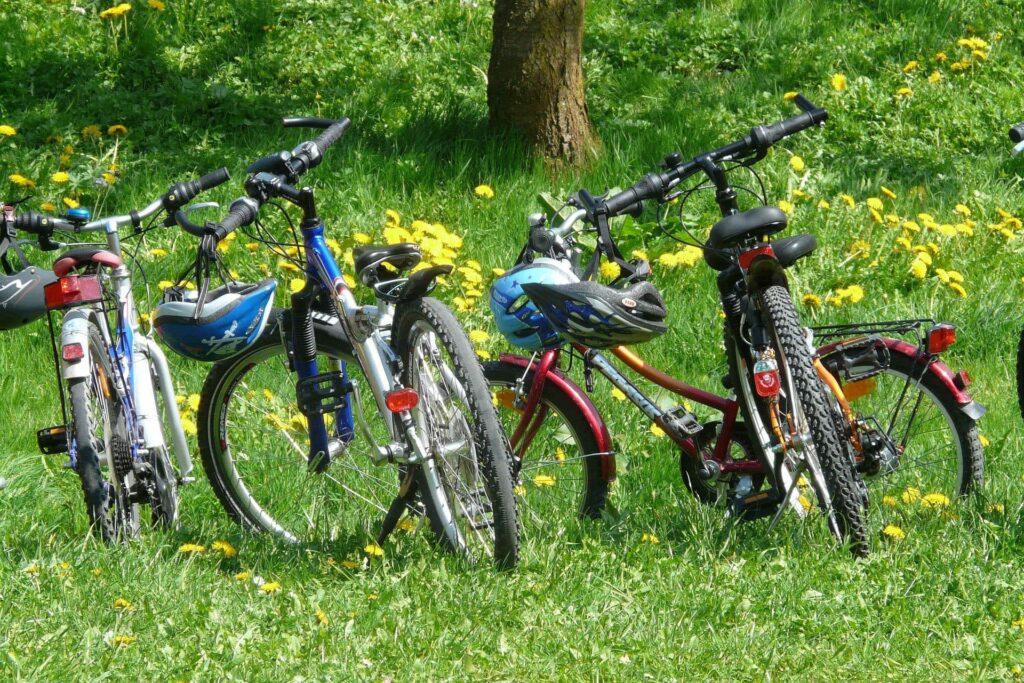 Vier bunte Kinderfahrräder sind auf Wiese abgestellt