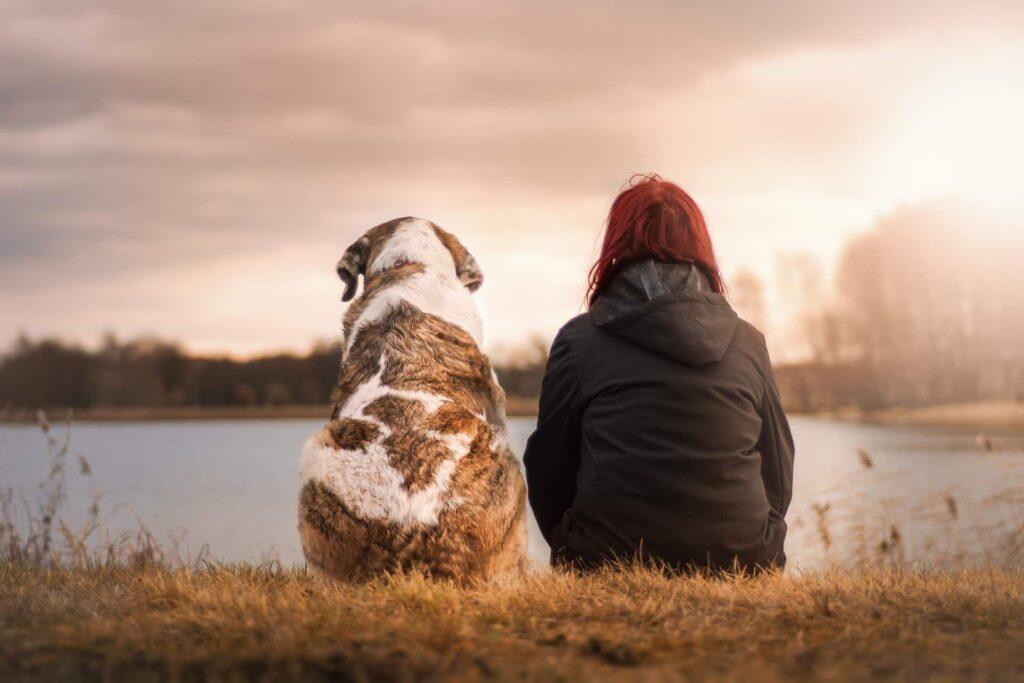Hund mit Frauchen am Seeufer
