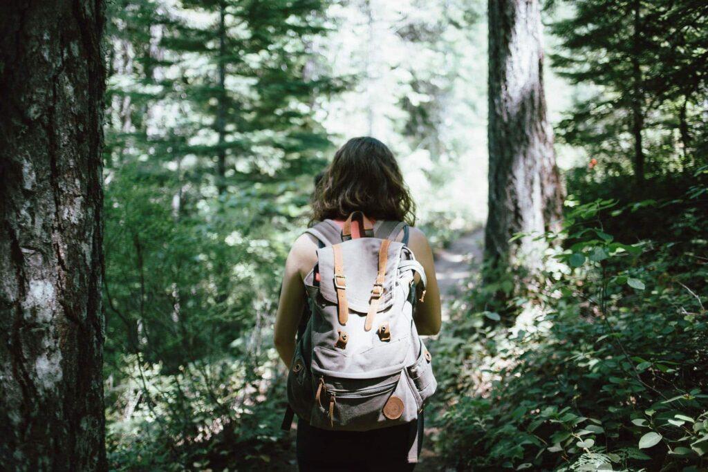 Eine Wanderin durchquert einen grünen Wald